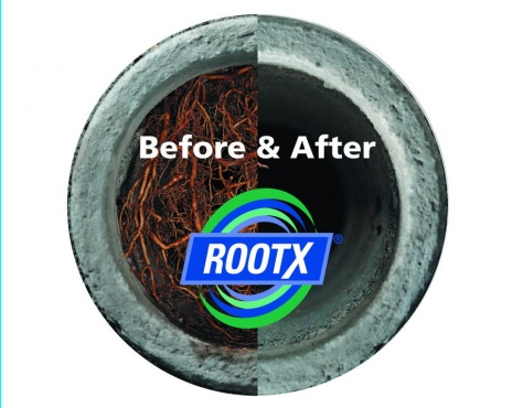 rootx rootering in northfield nh